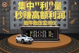枫车严选之商品优惠政策二:胎牛胎压无线通用汽车轮胎检测仪!
